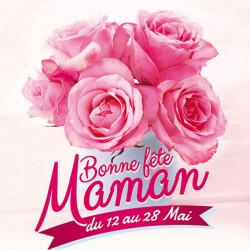Tickets de tombola 10x10 Bonne Fête Maman Roses