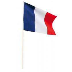Drapeau France 45x30 cm
