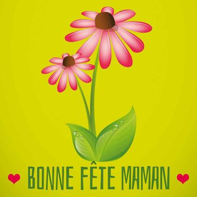Bonne Fête Maman fleur Gerbera